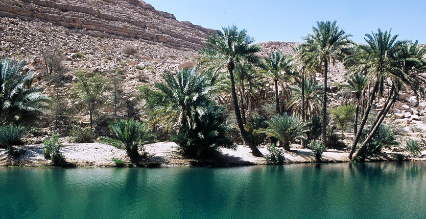 OmanWadiBaniAwed_web