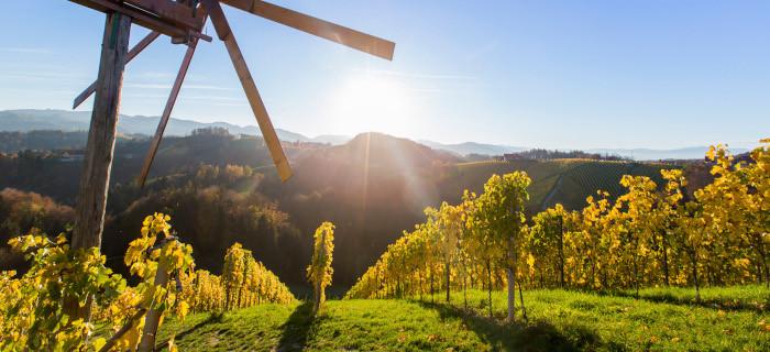 Ellmau grüßt die Steiermark